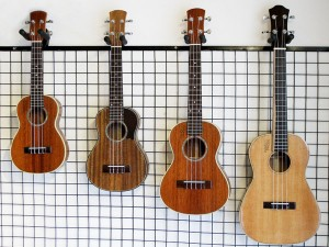 bon-mau-dan-ukulele-tai-pianofingers-300x225