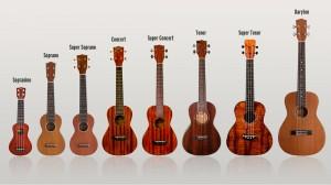 dan-ukulele 2